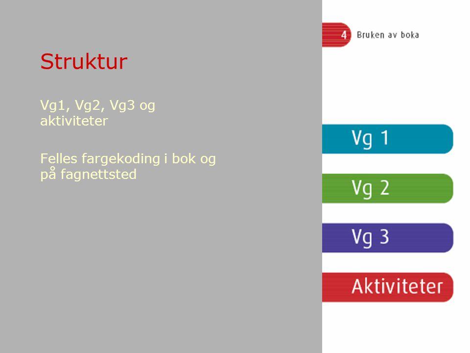 Struktur Vg1, Vg2, Vg3 og aktiviteter