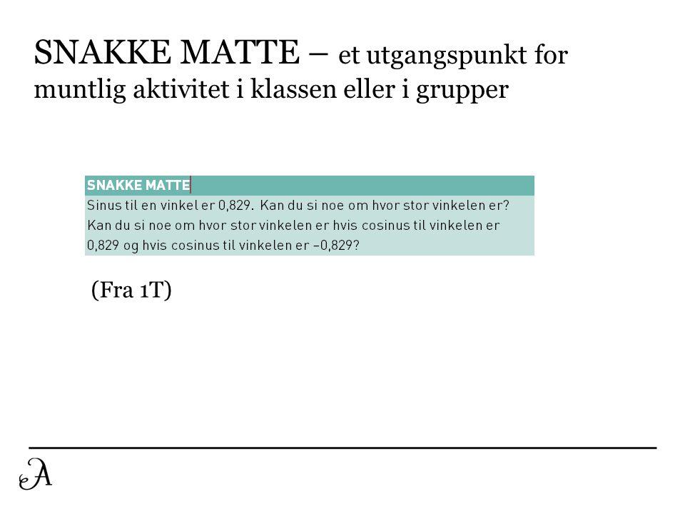 SNAKKE MATTE – et utgangspunkt for muntlig aktivitet i klassen eller i grupper
