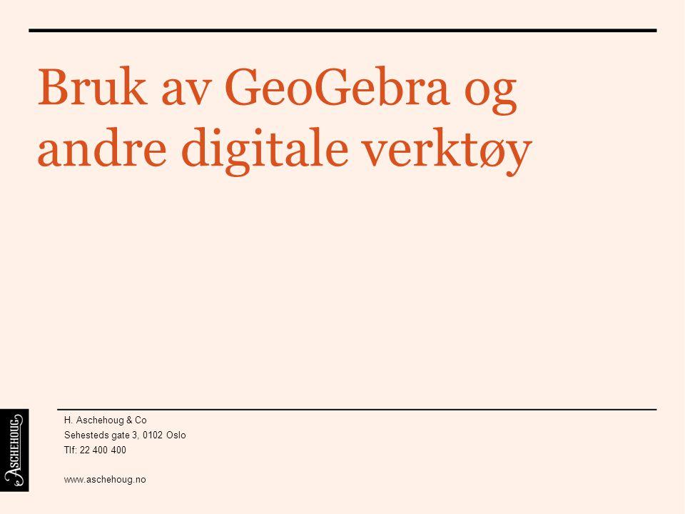 Bruk av GeoGebra og andre digitale verktøy