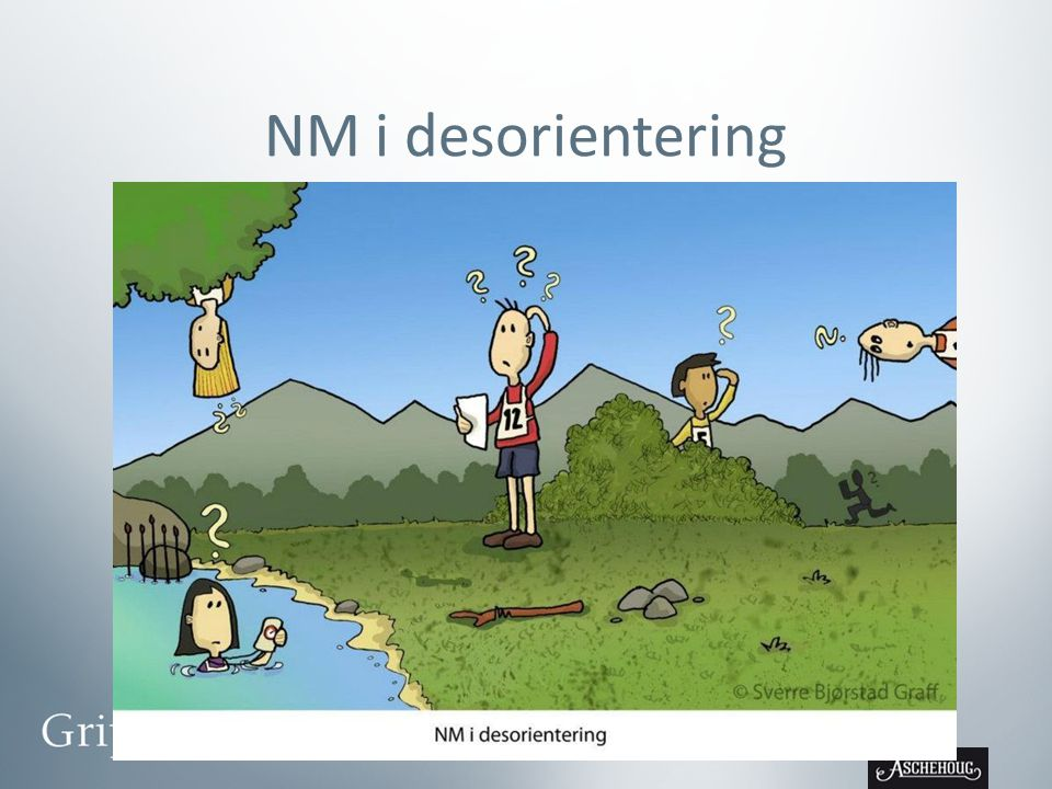 NM i desorientering