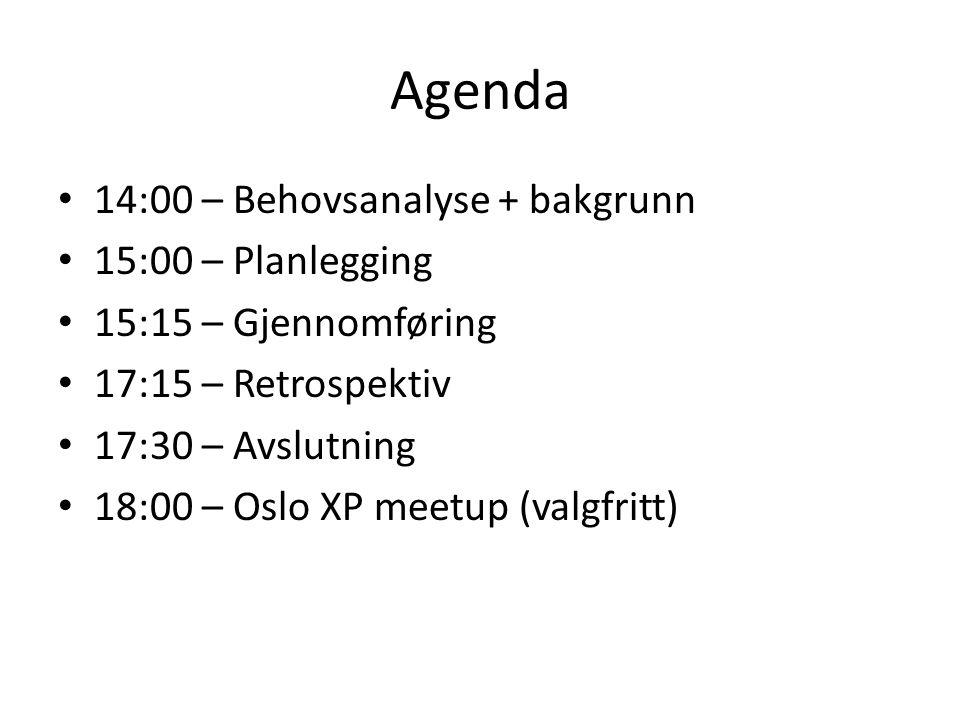 Agenda 14:00 – Behovsanalyse + bakgrunn 15:00 – Planlegging