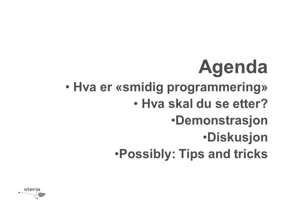 Agenda Hva er «smidig programmering» Hva skal du se etter
