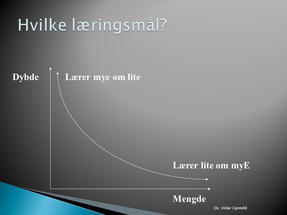 Hvilke læringsmål Dybde Lærer mye om lite Lærer lite om myE Mengde