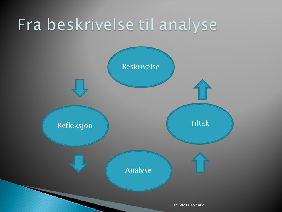 Fra beskrivelse til analyse