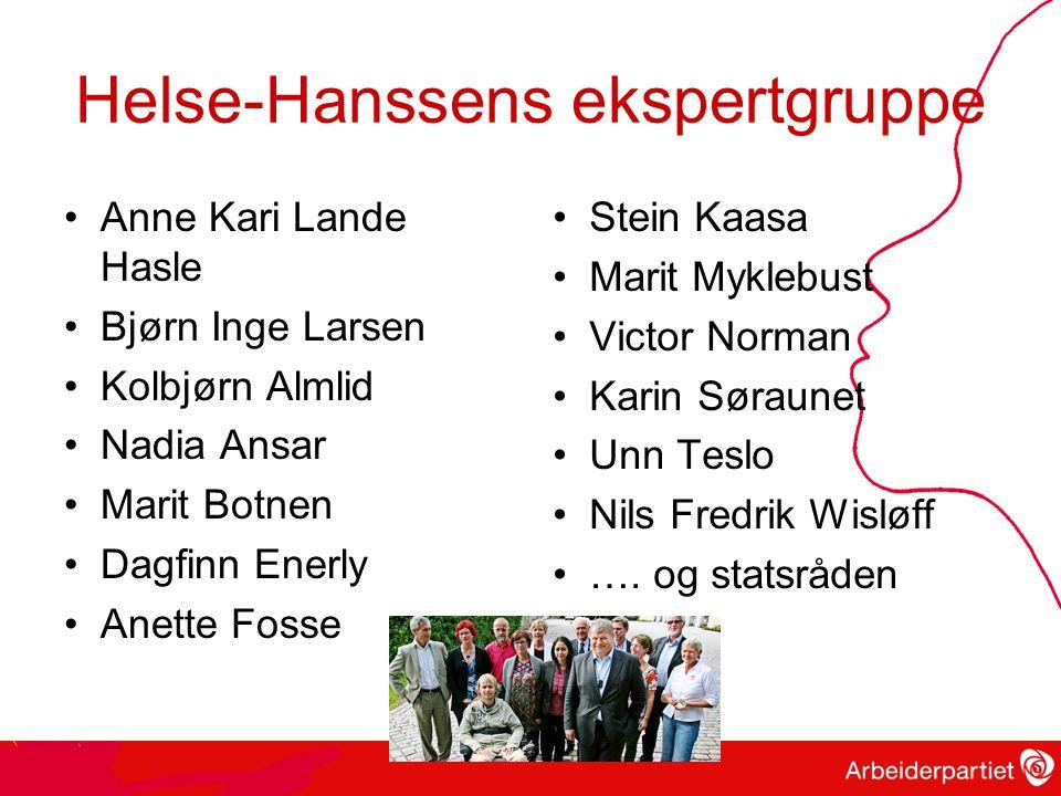 Helse-Hanssens ekspertgruppe