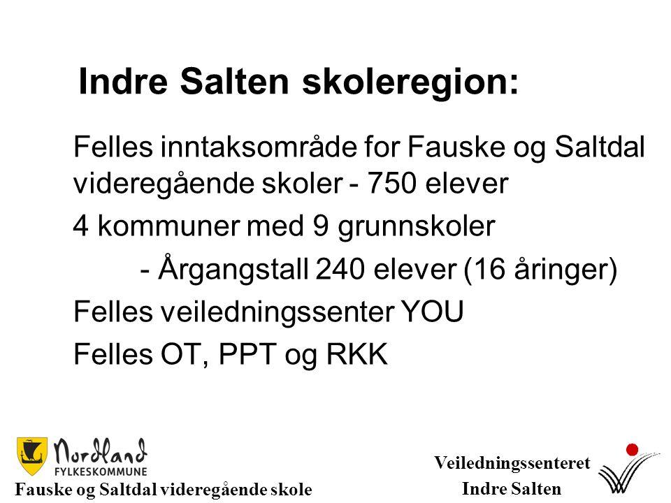 Indre Salten skoleregion: