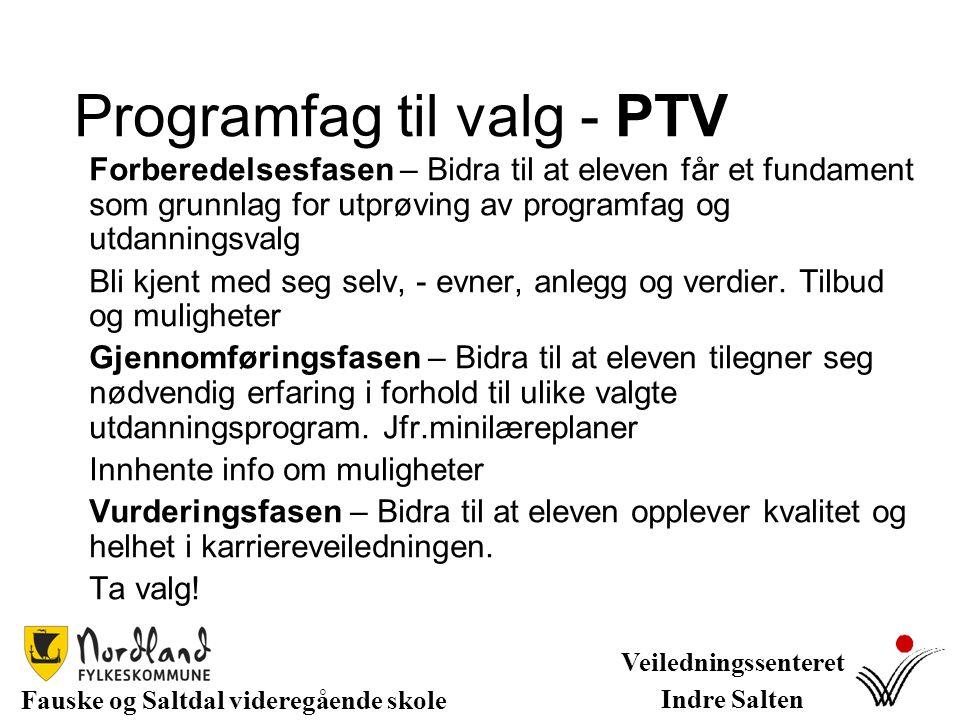Programfag til valg - PTV