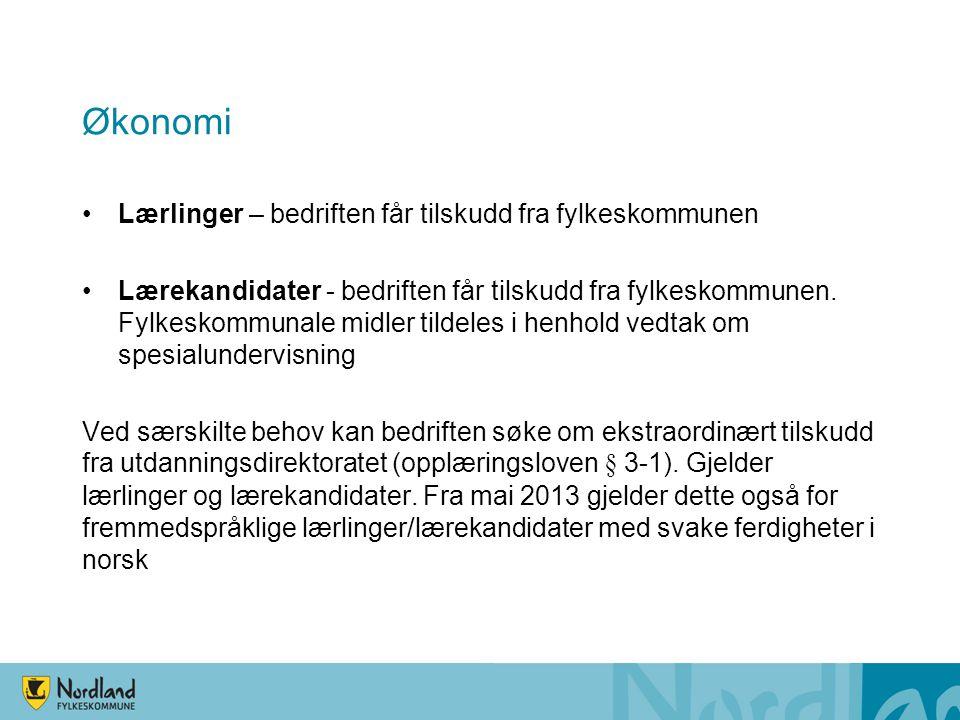 Økonomi Lærlinger – bedriften får tilskudd fra fylkeskommunen