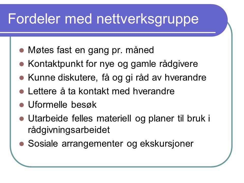 Fordeler med nettverksgruppe