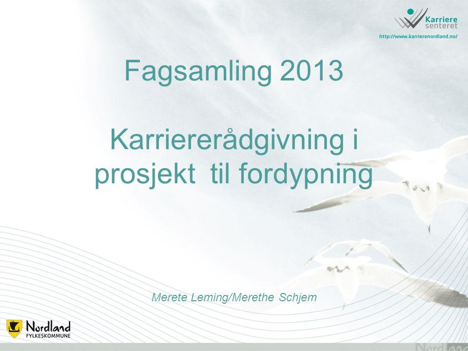 Fagsamling 2013 Karriererådgivning i prosjekt til fordypning Merete Leming/Merethe Schjem