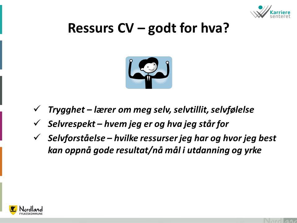Ressurs CV – godt for hva