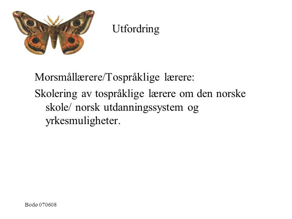 Morsmållærere/Tospråklige lærere: