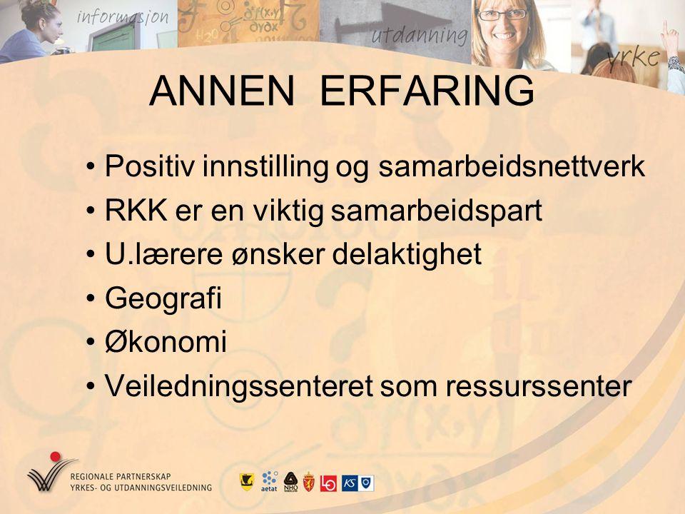 ANNEN ERFARING Positiv innstilling og samarbeidsnettverk