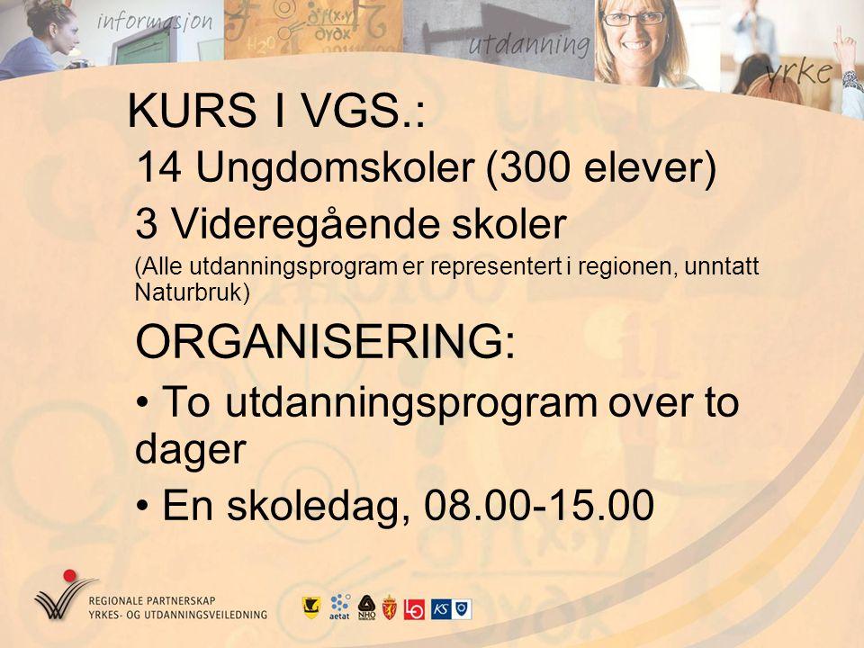 KURS I VGS.: ORGANISERING: 14 Ungdomskoler (300 elever)