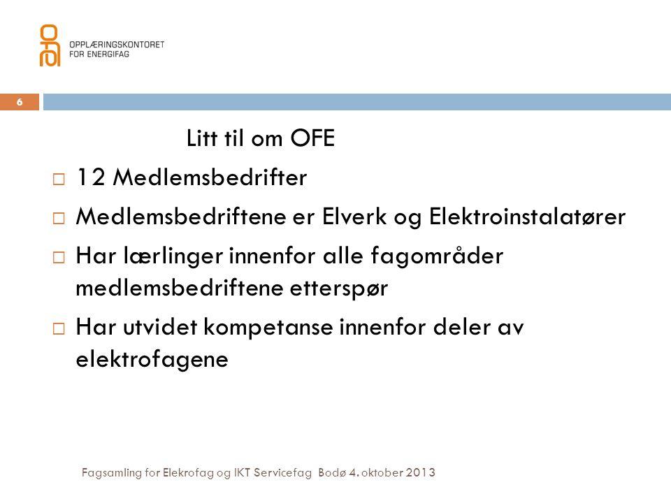 Medlemsbedriftene er Elverk og Elektroinstalatører