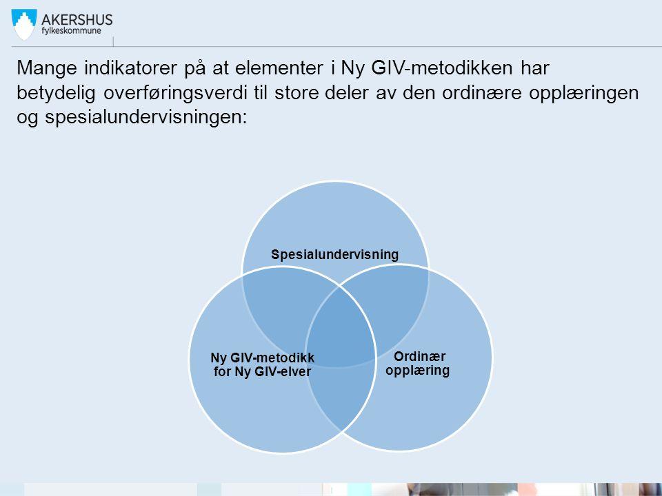 Ny GIV-metodikk for Ny GIV-elver
