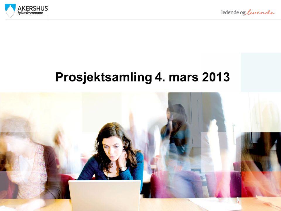 Prosjektsamling 4. mars 2013