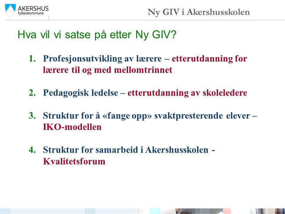 Hva vil vi satse på etter Ny GIV