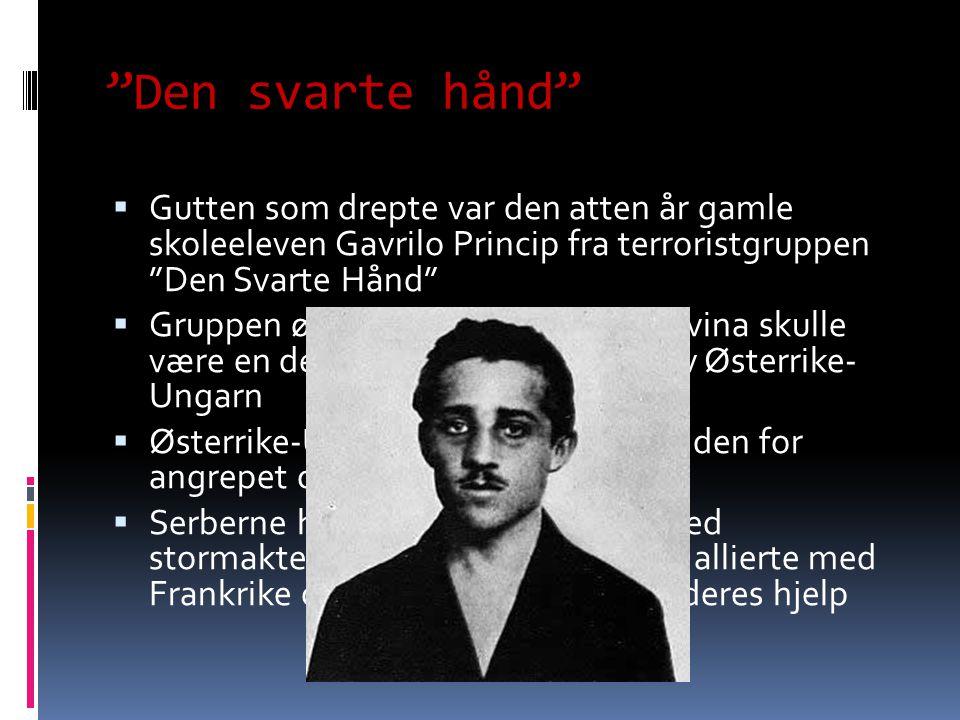 Den svarte hånd Gutten som drepte var den atten år gamle skoleeleven Gavrilo Princip fra terroristgruppen Den Svarte Hånd