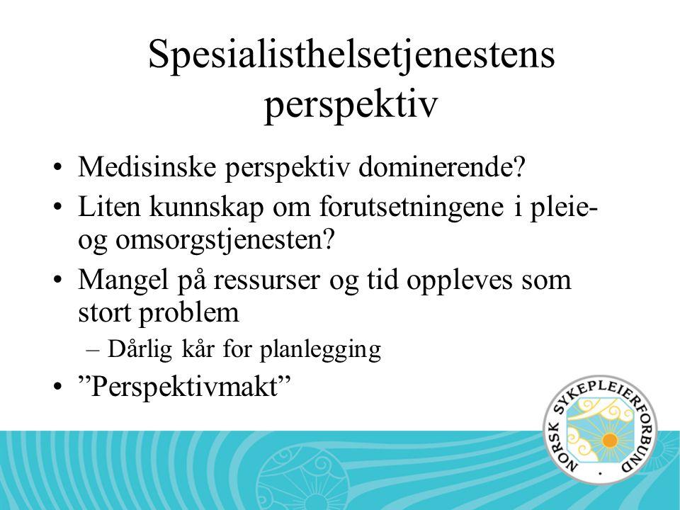 Spesialisthelsetjenestens perspektiv