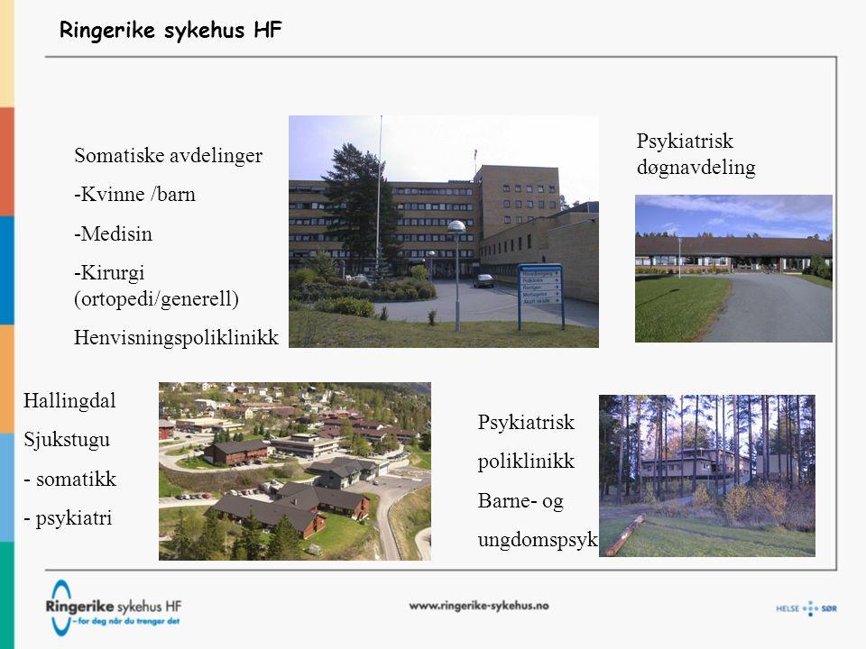 Ringerike sykehus HF Psykiatrisk døgnavdeling. Somatiske avdelinger. -Kvinne /barn. -Medisin.