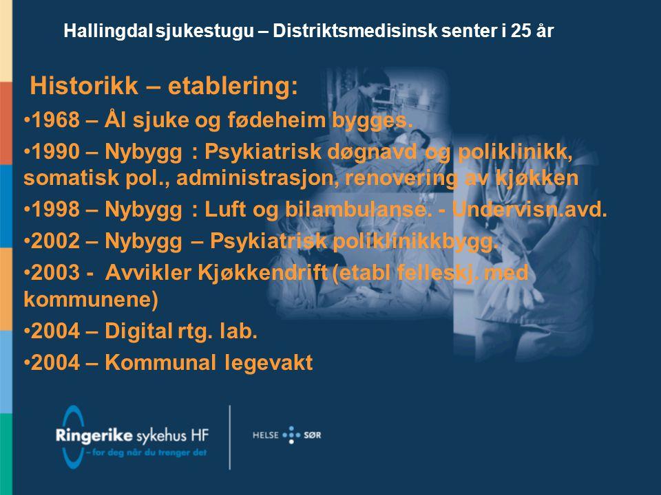 Hallingdal sjukestugu – Distriktsmedisinsk senter i 25 år
