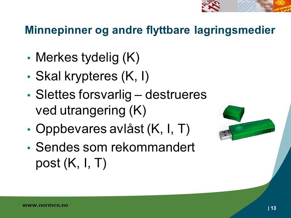 Minnepinner og andre flyttbare lagringsmedier