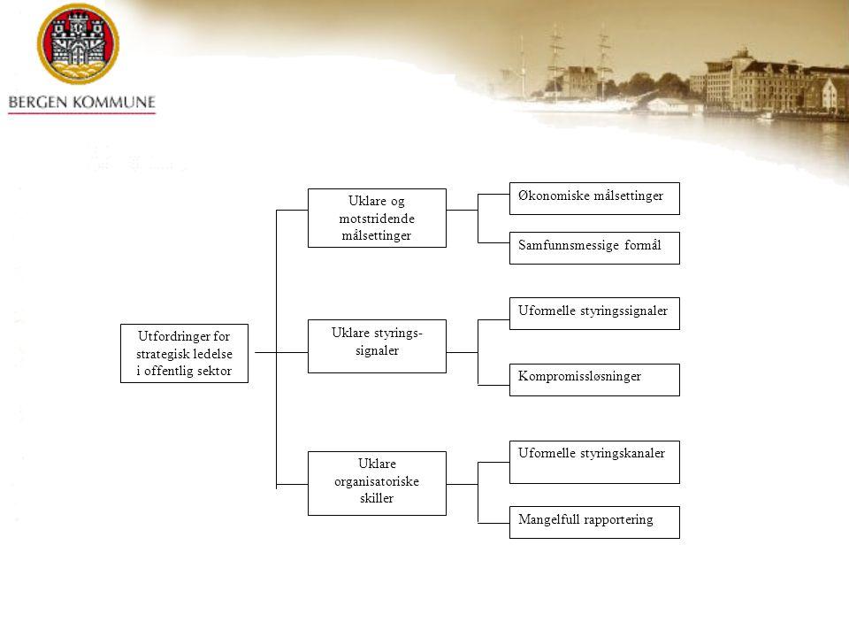 Økonomiske målsettinger Uklare og motstridende målsettinger