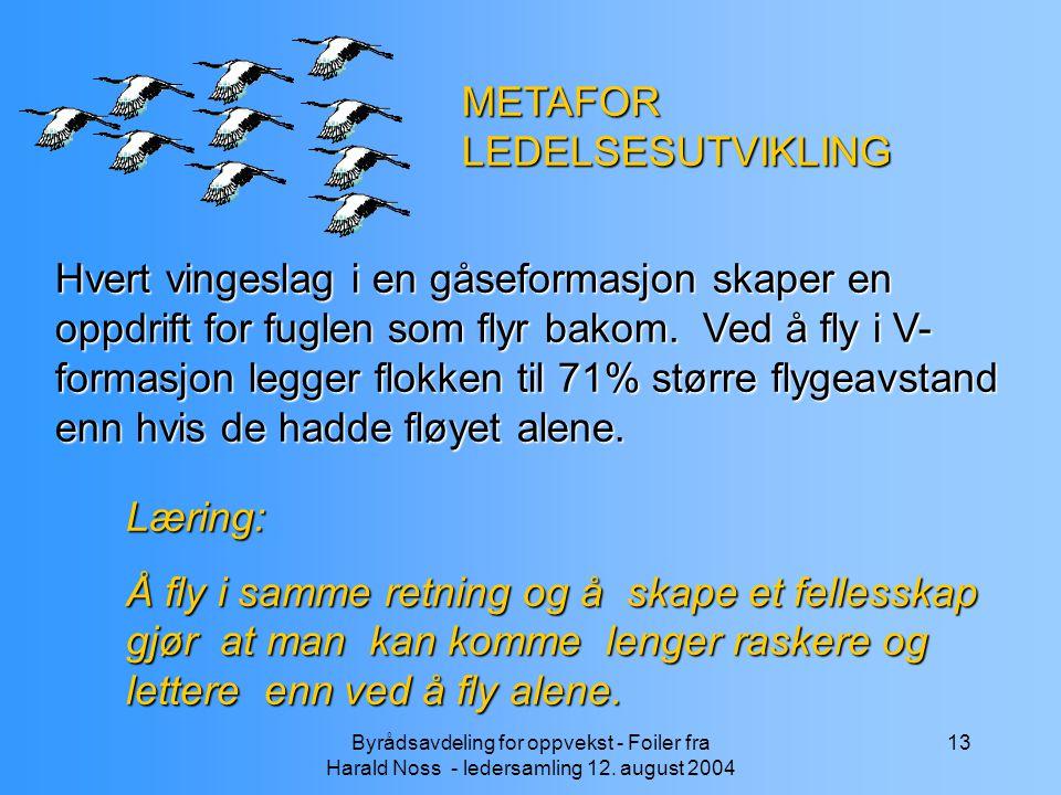 METAFOR LEDELSESUTVIKLING