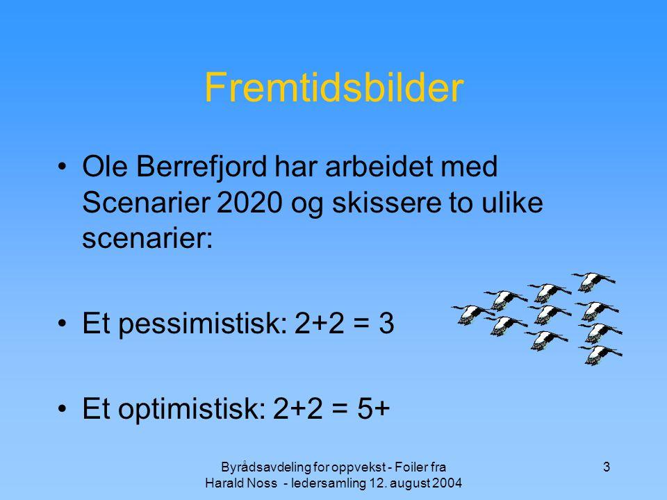 Fremtidsbilder Ole Berrefjord har arbeidet med Scenarier 2020 og skissere to ulike scenarier: Et pessimistisk: 2+2 = 3.