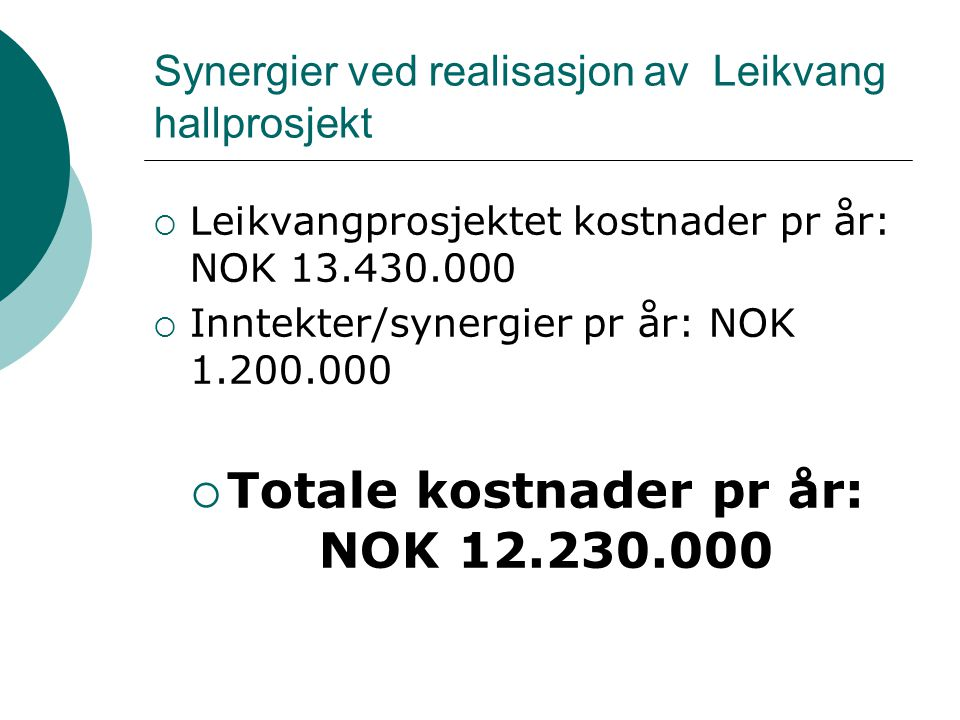 Synergier ved realisasjon av Leikvang hallprosjekt