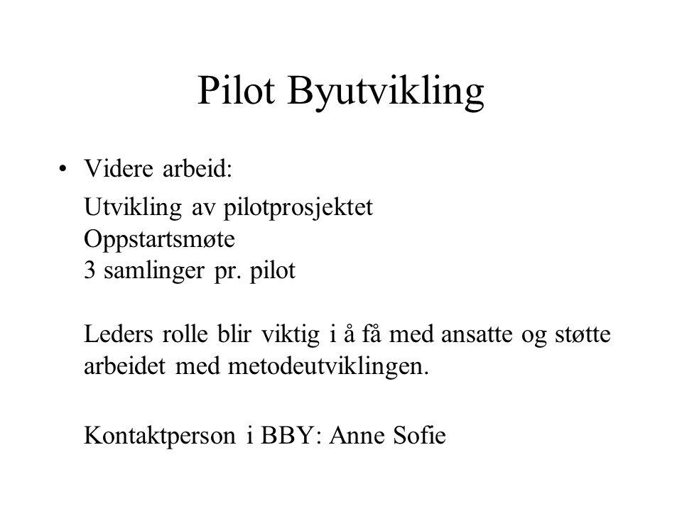 Pilot Byutvikling Videre arbeid: