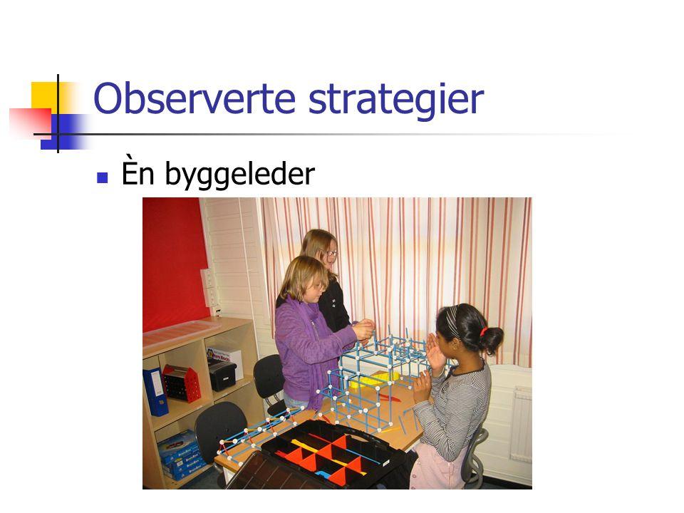Observerte strategier