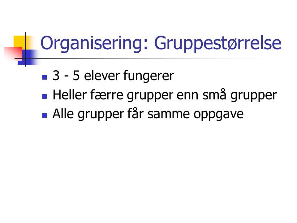 Organisering: Gruppestørrelse