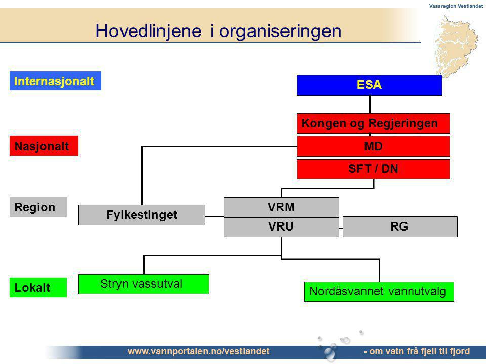 Hovedlinjene i organiseringen