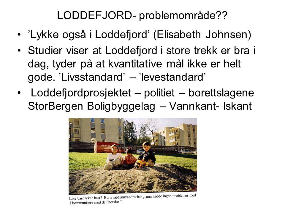 LODDEFJORD- problemområde