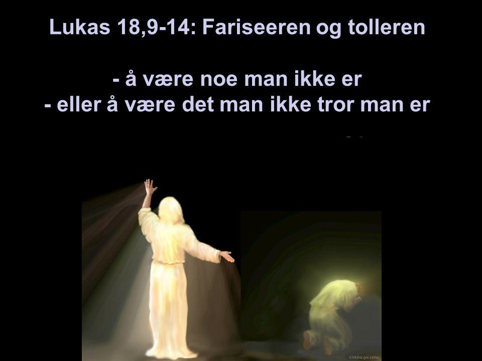 Lukas 18,9-14: Fariseeren og tolleren - å være noe man ikke er - eller å være det man ikke tror man er