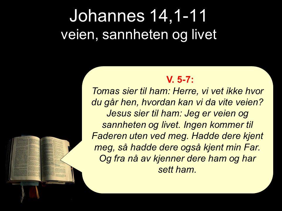Johannes 14,1-11 veien, sannheten og livet