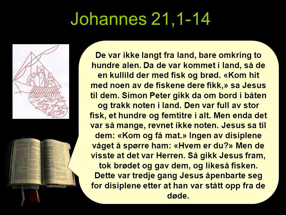 Johannes 21,1-14