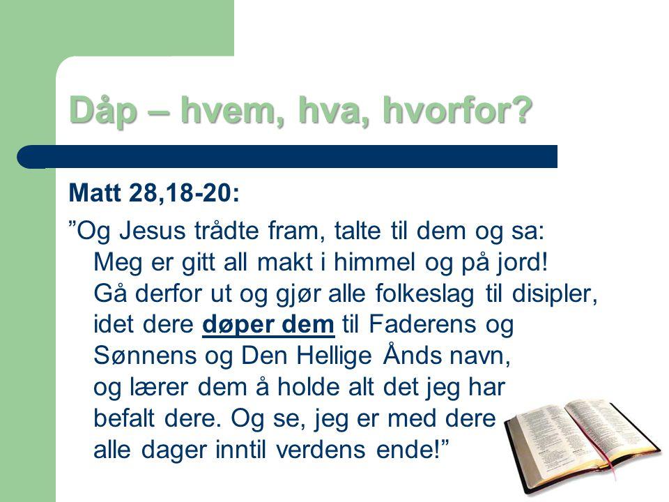Dåp – hvem, hva, hvorfor Matt 28,18-20: