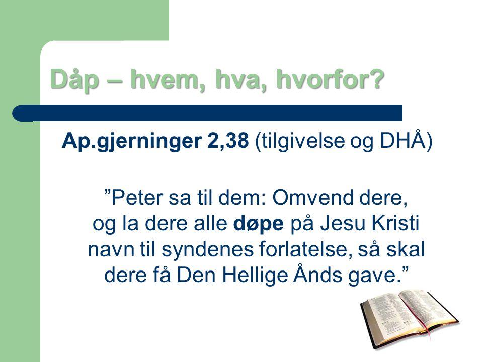 Ap.gjerninger 2,38 (tilgivelse og DHÅ)
