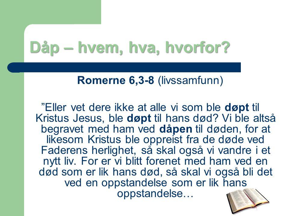 Romerne 6,3-8 (livssamfunn)