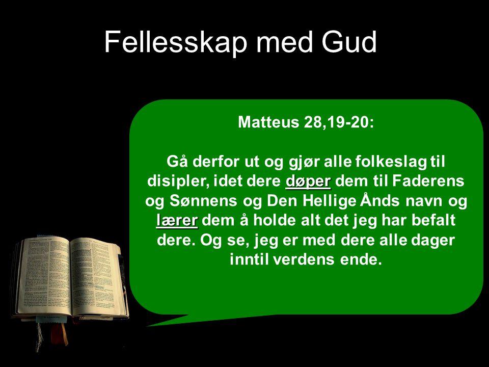 Fellesskap med Gud Matteus 28,19-20:
