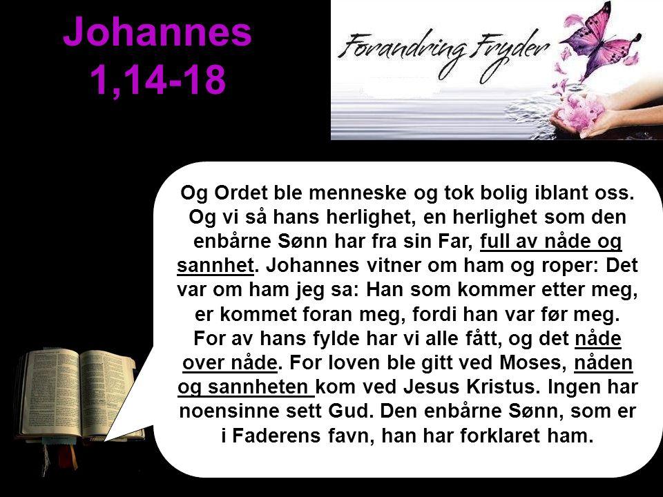 Johannes 1,14-18