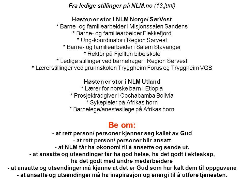 Fra ledige stillinger på NLM. no (13