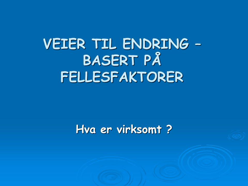 VEIER TIL ENDRING – BASERT PÅ FELLESFAKTORER