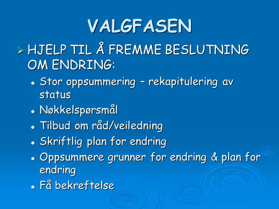 VALGFASEN HJELP TIL Å FREMME BESLUTNING OM ENDRING: