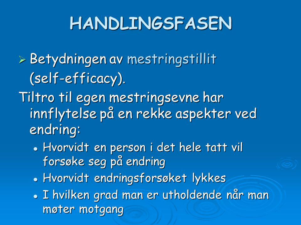 HANDLINGSFASEN Betydningen av mestringstillit (self-efficacy).