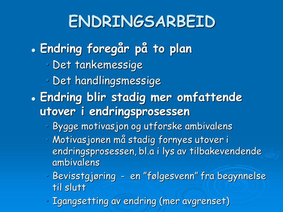 ENDRINGSARBEID Endring foregår på to plan