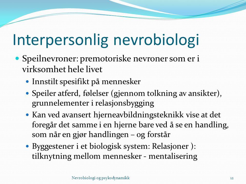 Interpersonlig nevrobiologi